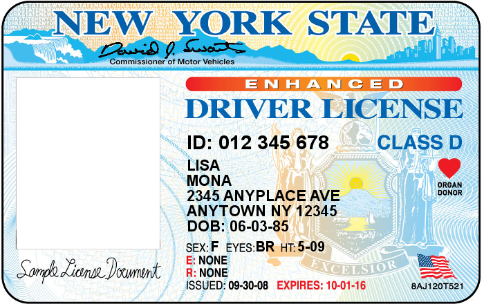 ny state drivers license document number